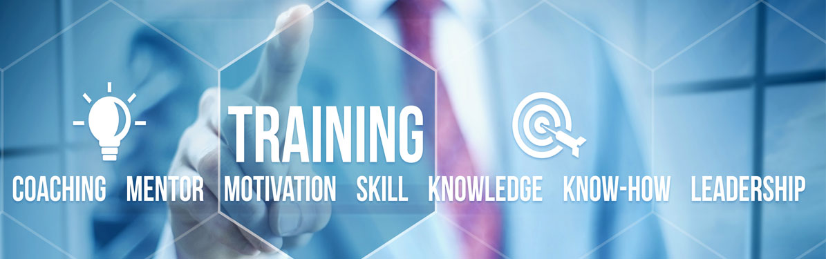 We provide dealership training